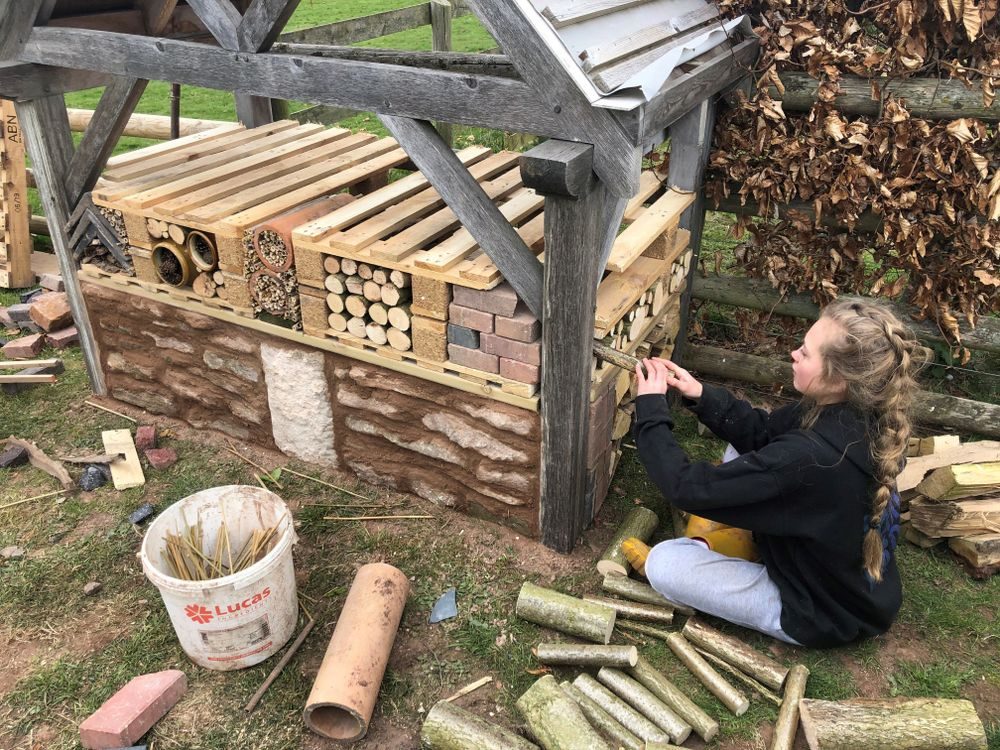 The Bug Hotel at Townsend Farm
