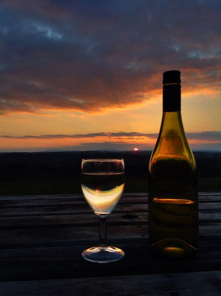 Enjoying a glass at Townsend Farm Vineyard