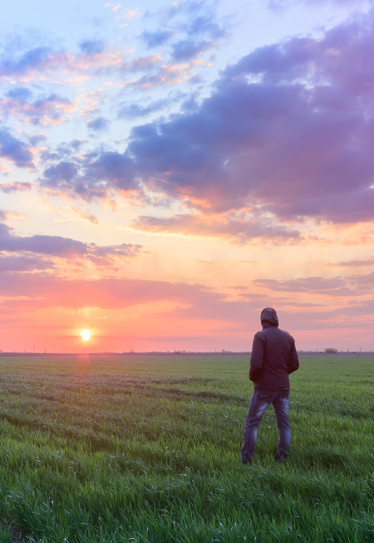 Regenerate your Mind Agriculture and Mental Health