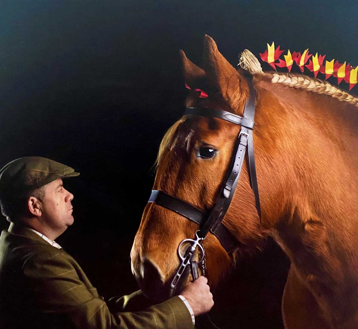 Ben with his Suffolk Punch Horse