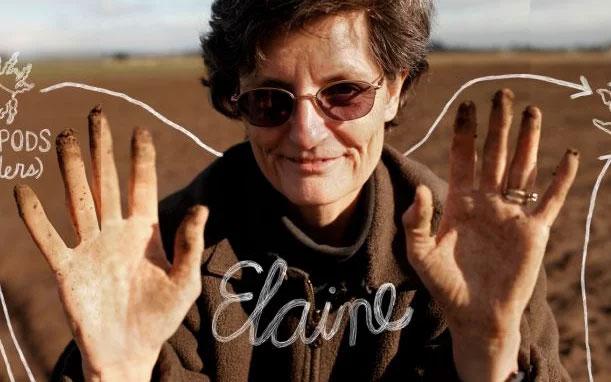 Dr Elaine Ingham Compost