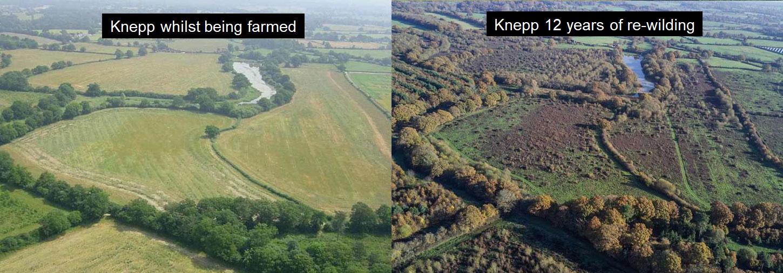Knepp Estate Sussex