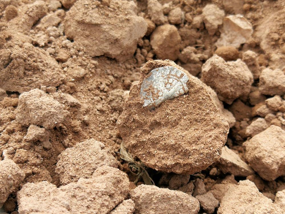 roman bronze age coins